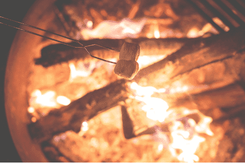 [UPDATED] 18 Tasty Campfire Recipes For Your Next Outdoor Trip